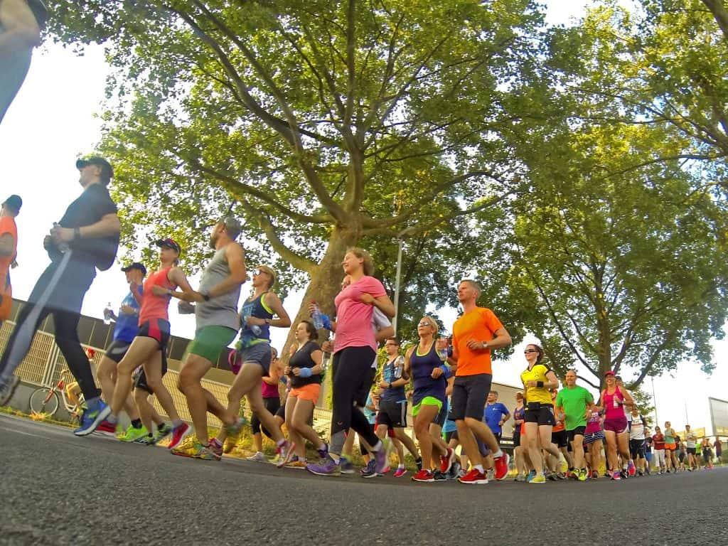 Eine Gruppe von Läufern läuft auf einer Straße unter einem großen Baum her
