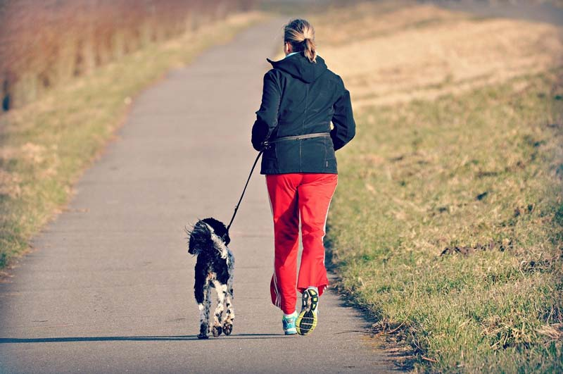 Eine Frau geht Joggen mit Hund an der Leine