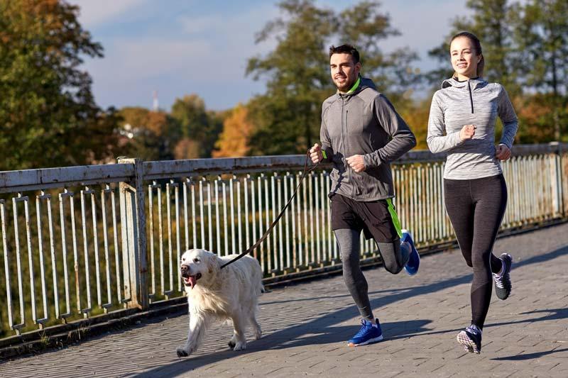 Zwei Läufer Joggen mit Hund an der Leine